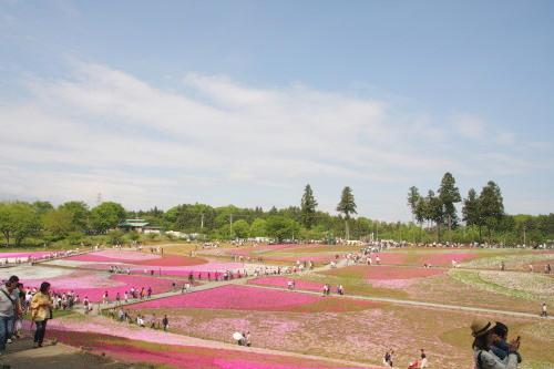 20150504_10芝桜の丘