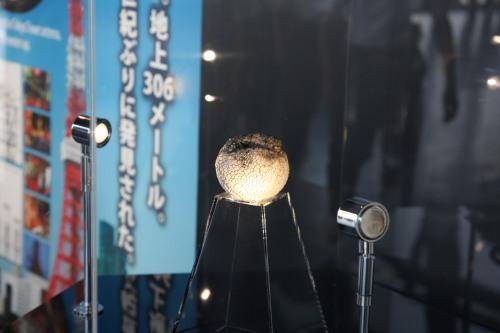 東京タワー謎の軟式ボール04