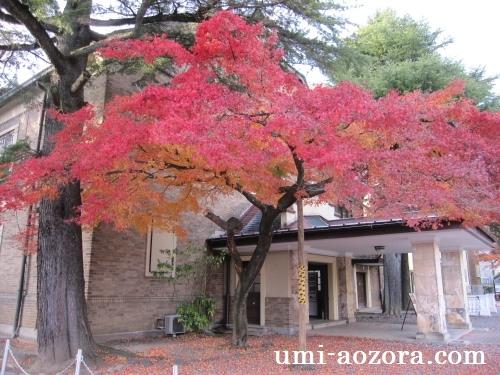 諏訪湖片倉館の紅葉